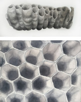Wasps Nest Paintings