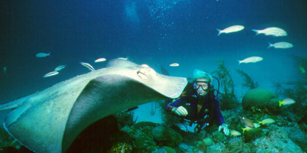 FT. Lauderdale Wreck Reef Weekend
