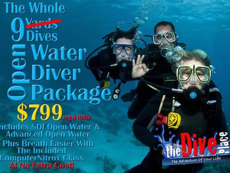 Go For The Whole 9 Dives - Open Water Package!