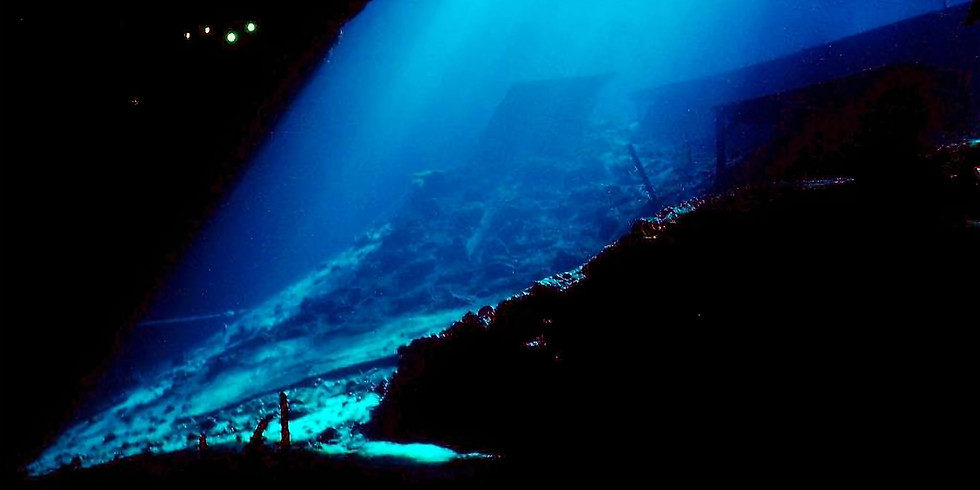 Blue Grotto Night Dive And Specialty
