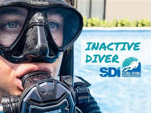 SDI Inactive Diver eLearning Only