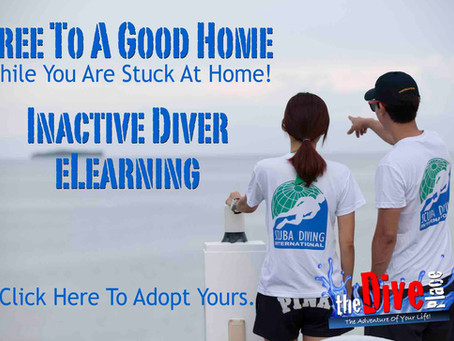 Inactive Diver eLearning Code - Free To Good Home