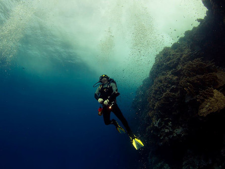 Get Your SDI Solo Diver Certification.