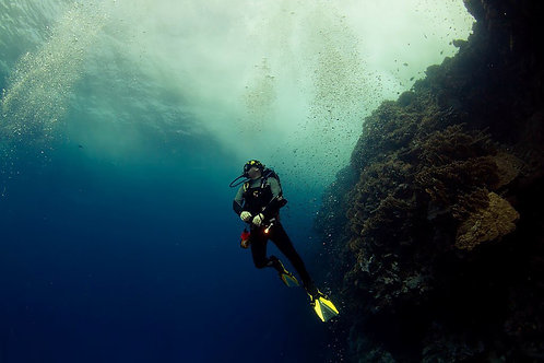 SDI Solo Diver Specialty Diver eLearning Only