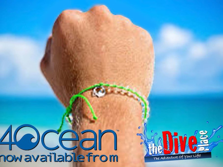 4Ocean Bracelets Now Available!