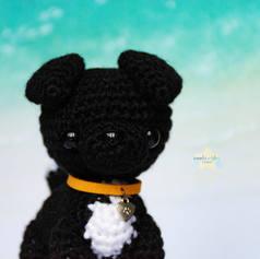 custom-black-dog-1.jpg