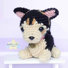 adorable-custom-dog-fetajpg