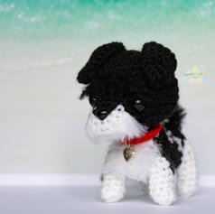 custom-black-and-white-dog-1.jpg