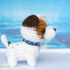 custom-dog-in-water-2jpg