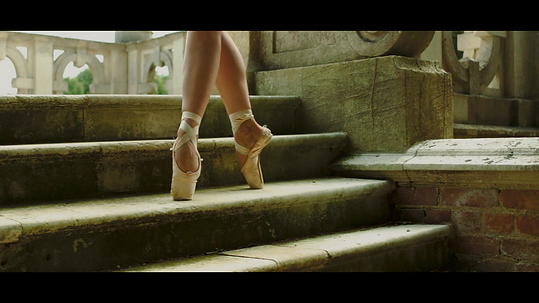 Pointe Shoes.png