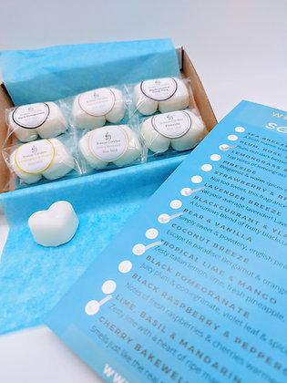 Sample Box- Wax Melts