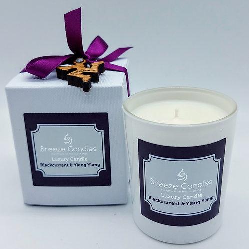 9cl Boxed Candle Jar - Blackcurrant & Ylang ylang