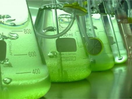 Etanol hidratado sobe 7% nas usinas e remunera mais que anidro pela 1ª vez na safra