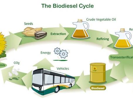 Previsões do Mercado Global de Biocombustíveis e Biodiesel (2018-2025)