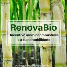 RenovaBio quer Reduzir Emissão de Gases Poluentes em 11% em 10 anos