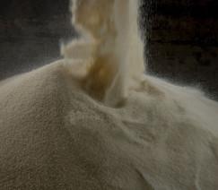 Açúcar bruto amplia recuperação na ICE; outubro é negociado a 12,35 cents/libra
