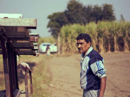 3 ações ganham com Índia repetindo Brasil ao misturar mais etanol na gasolina