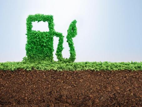 Consumo mundial de biocombustíveis deve se recuperar e crescer 8% este ano