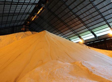 Açúcar: contratos futuros fecham desvalorizados na ICE em Nova York