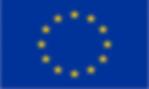 european-union-eu-large-country-flag-5-x