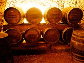 Mayor de Migueloa – Rioja