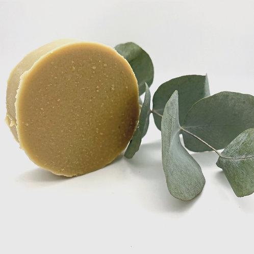 Eucalyptus Burst Shampoo Bar