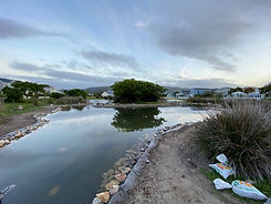 clouds reflection 2.jpg