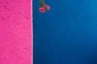 Rosa e blu
