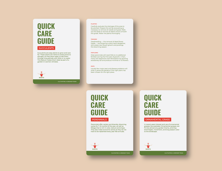 daisetta_care_cards-04.png
