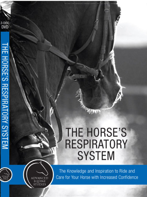 AES the Horse's Respiratory system
