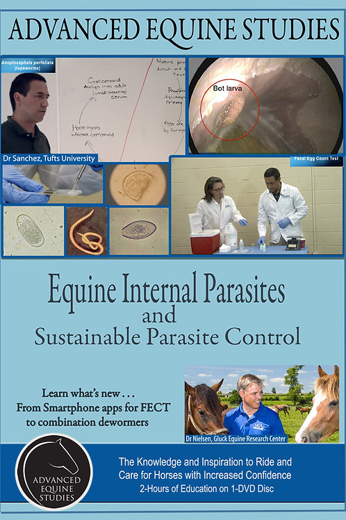 Equine Internal Parasites