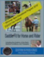 Saddle fit DVD