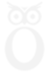 WISEOWL-WEBSITE-HOME-OWL.png