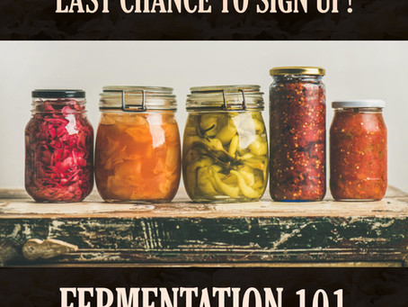 The Fermentation Workshop