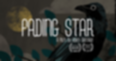 FadingStar.Cover1(1).png