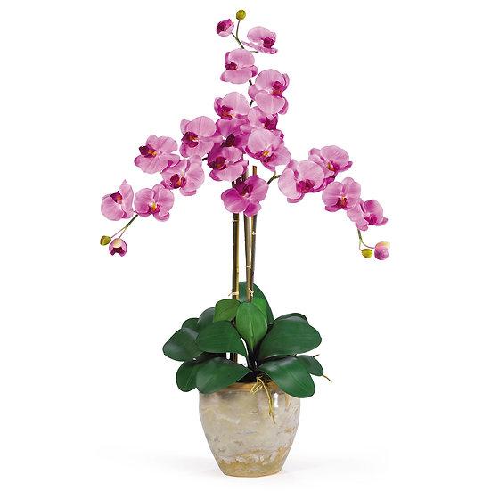 Triple Stem Phalaenopsis Silk Orchid Arrangement #1017-WH
