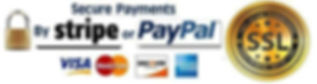 Secure payments stripe or paypal 2020.jp