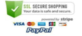 SSL Secured Shopping.jpg