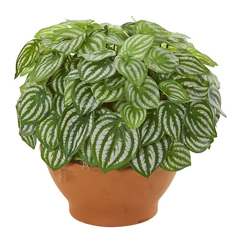 Watermelon Peperomia Artificial Plant In Clay Planter (Real Touch) #8523