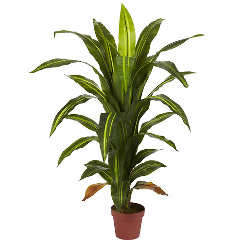 4' Dracaena Silk Plant (Real Touch) #6650