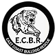 ECBR Logo Transparent.png
