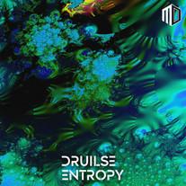 Druilse - Entropy