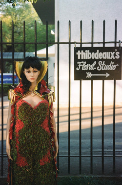 Flower Queen - Thibodeaux's Floral