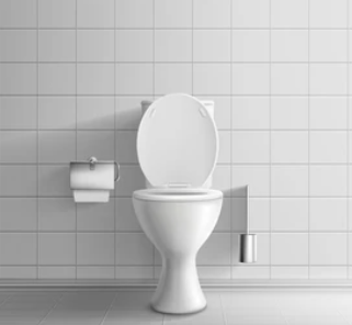 a white toilet with a silver toilet roll holder and a silver toilet brush