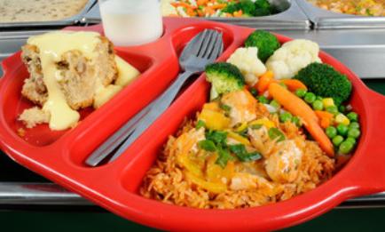 school dinner tray