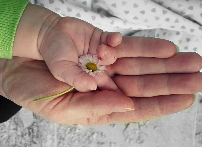 a parent and their child holding a daisy in their hand