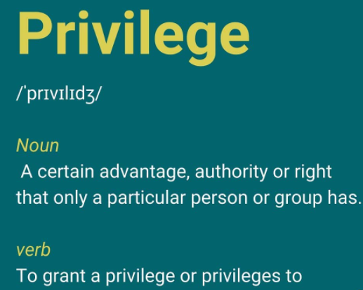 privilege: noun - a certain advantage, authority or right that only a particular person or group has. Verb - to grant a privilege or privileges to