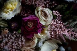 Lush petals
