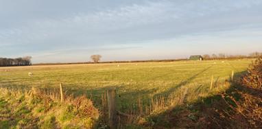 Land at Dib Road