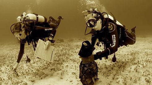 Aldora Divers Go Pro 02.jpg